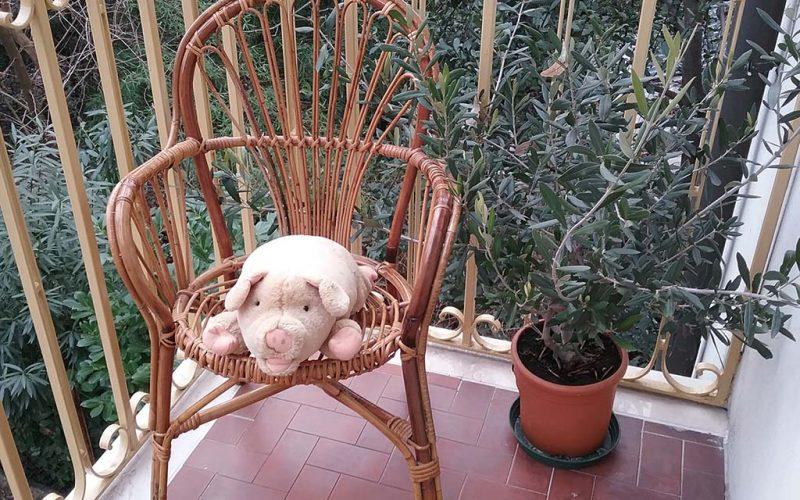 Libri per emozionarsi: entra nel magico mondo di Pig!